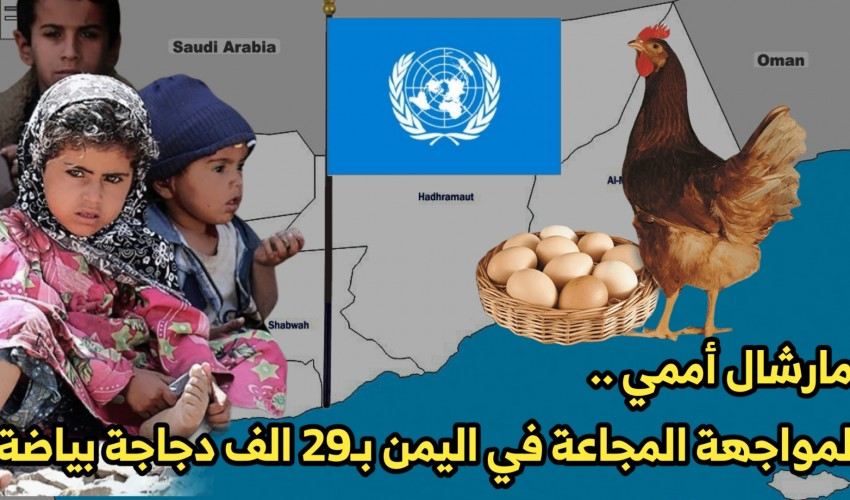 شاهد .. مارشال أممي لمواجهة المجاعة في اليمن بـ29 الف دجاجة بياضة يُثير سخرية اليمنيين ( فيديو )